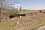 Aschenfeld